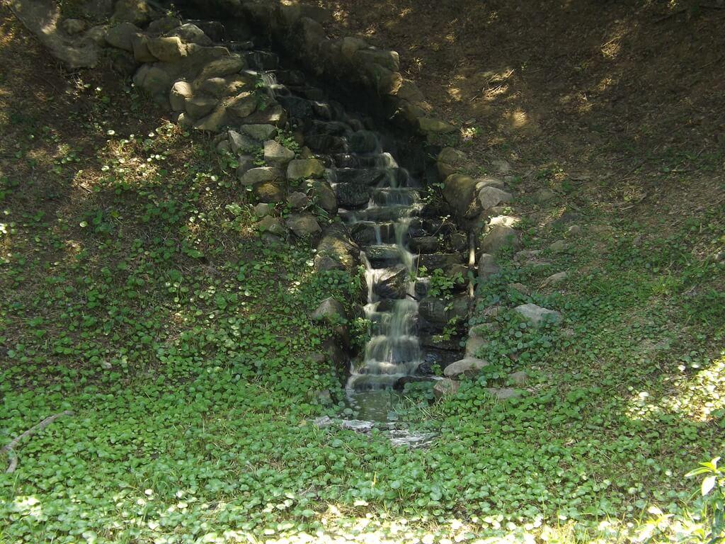 新竹青青草原的圖片:從上方水池流下來的水道