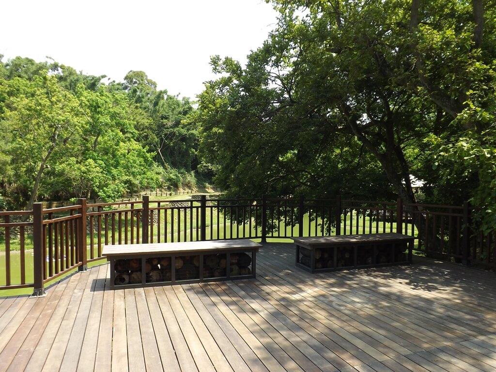 新竹青青草原的圖片:生態水池上向外突出的木棧觀景台