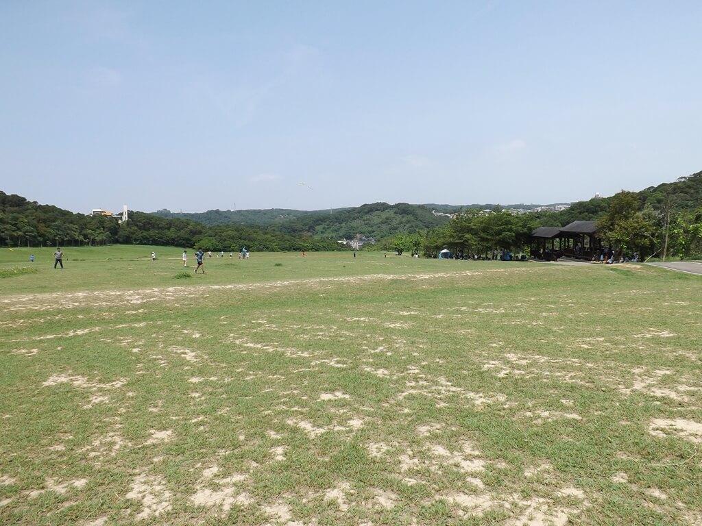 新竹青青草原的圖片:青青草原大草皮(123660078)