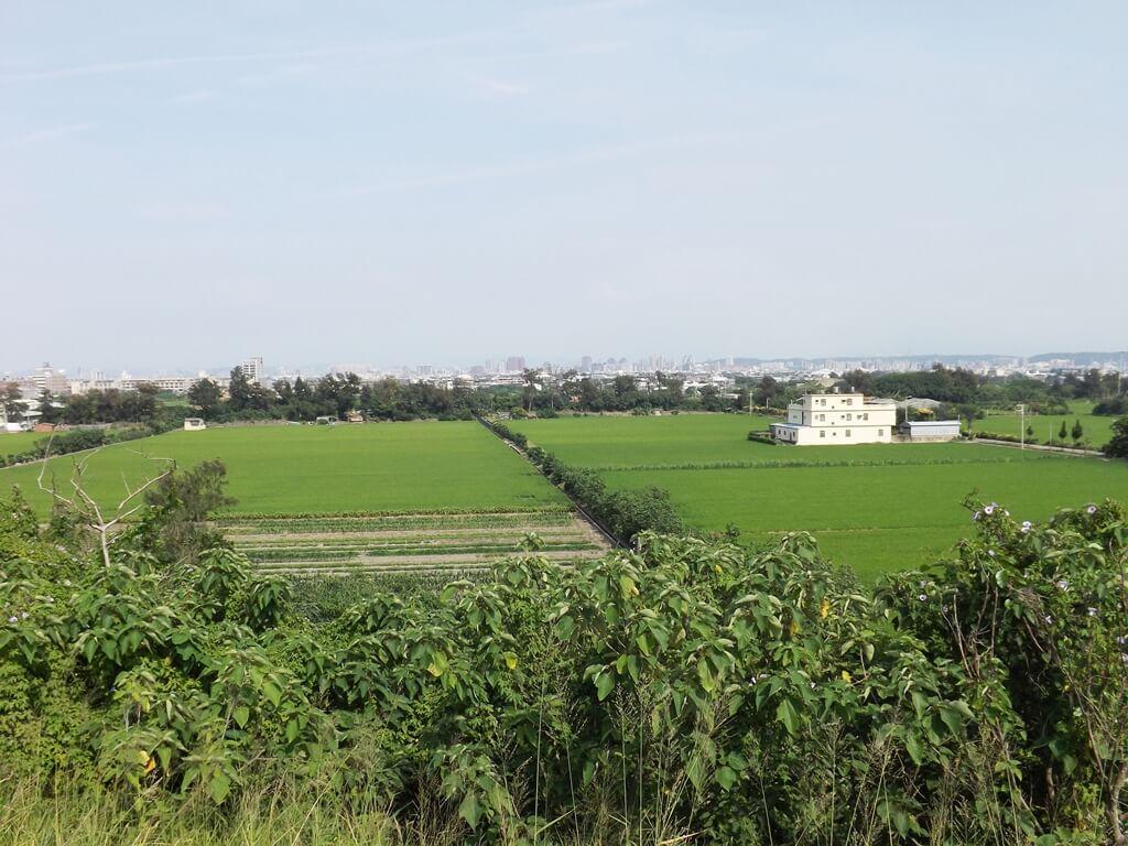 新竹海天一線看海區的圖片:看海區外圍的農田