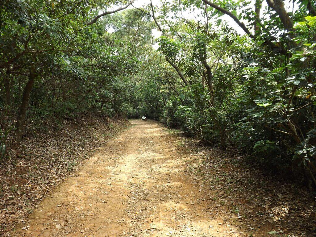 羊稠森林步道的圖片:羊稠步道實景(123660122)