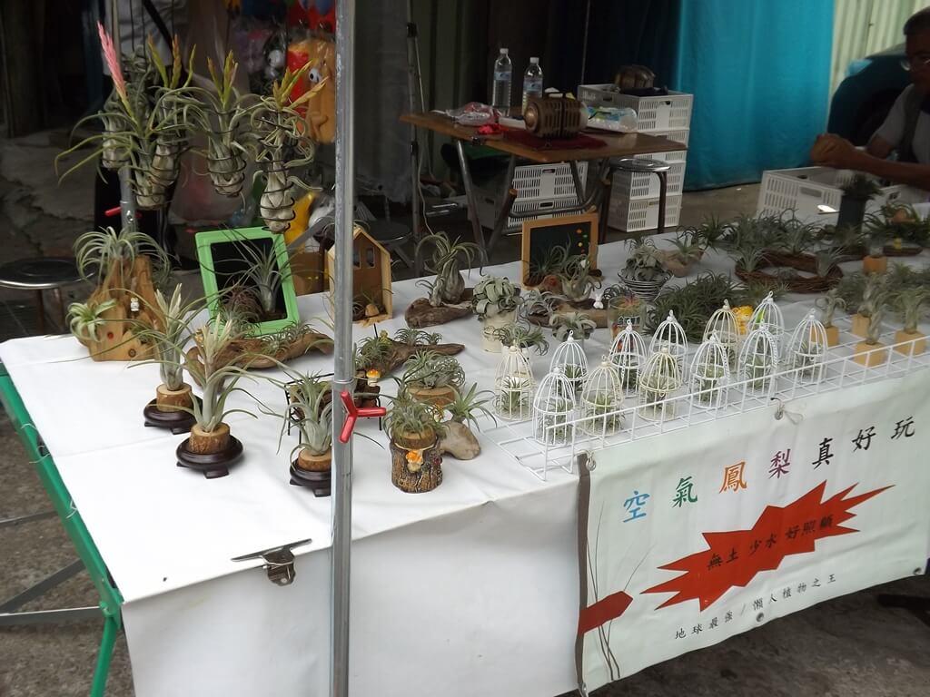 內灣老街的圖片:仙人掌販售攤販