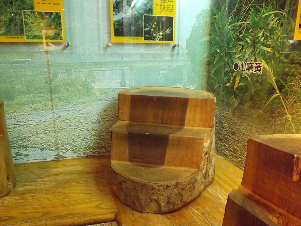 內灣老街的圖片:內灣林業展示館室內展示的樹幹椅