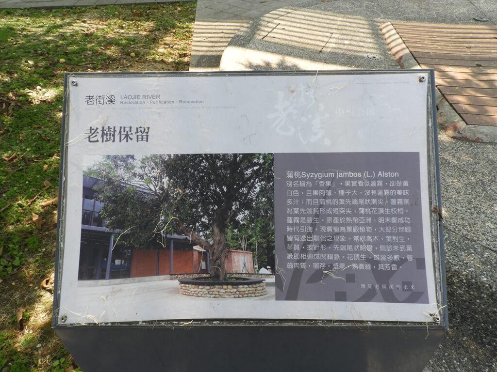 中壢老街溪步道的圖片:老樹保留看板
