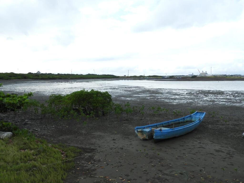 挖仔尾自然生態保留區水筆仔公園的圖片:第7張照片