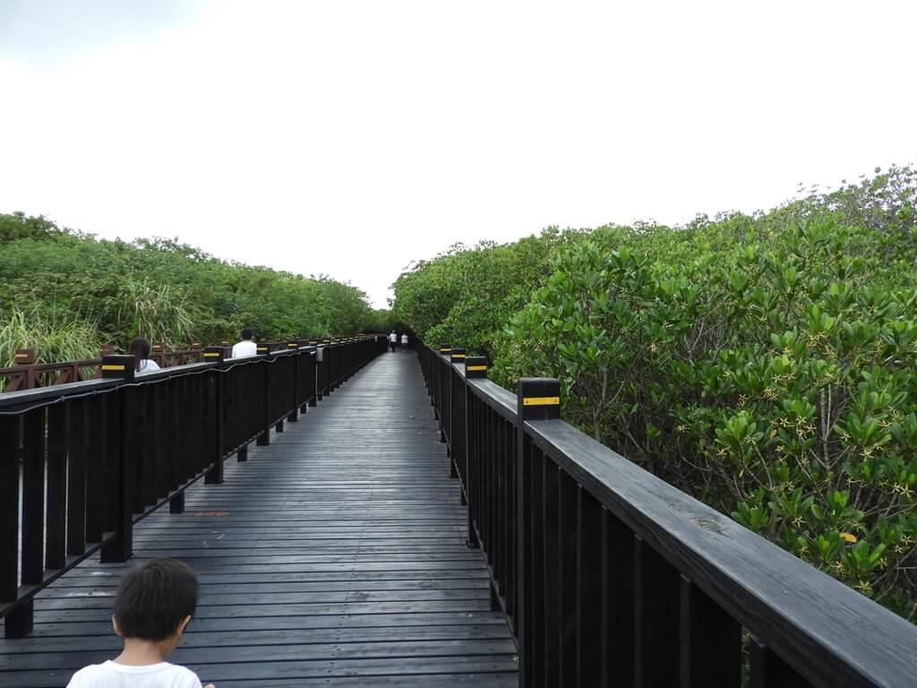 挖仔尾自然生態保留區水筆仔公園的圖片:第10張照片