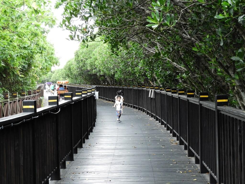 挖仔尾自然生態保留區水筆仔公園的圖片:第11張照片