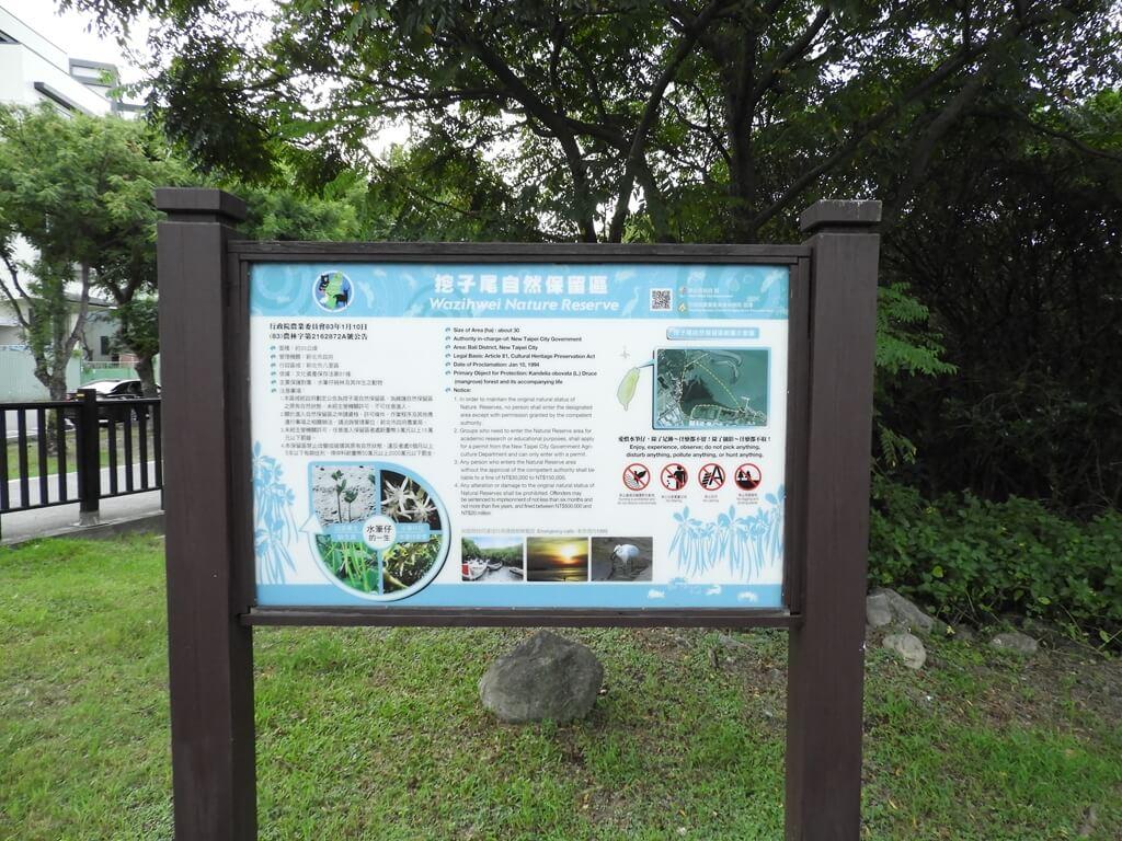 挖仔尾自然生態保留區水筆仔公園的圖片:第13張照片