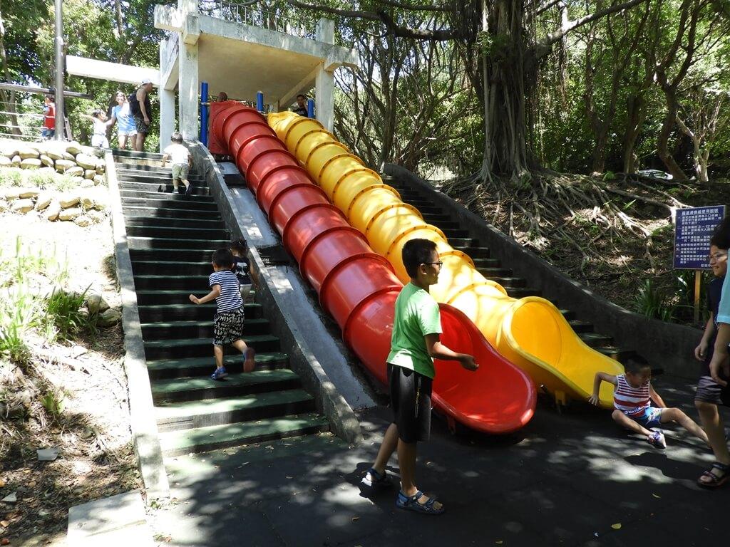 虎頭山公園(桃園市)的圖片:第31張照片