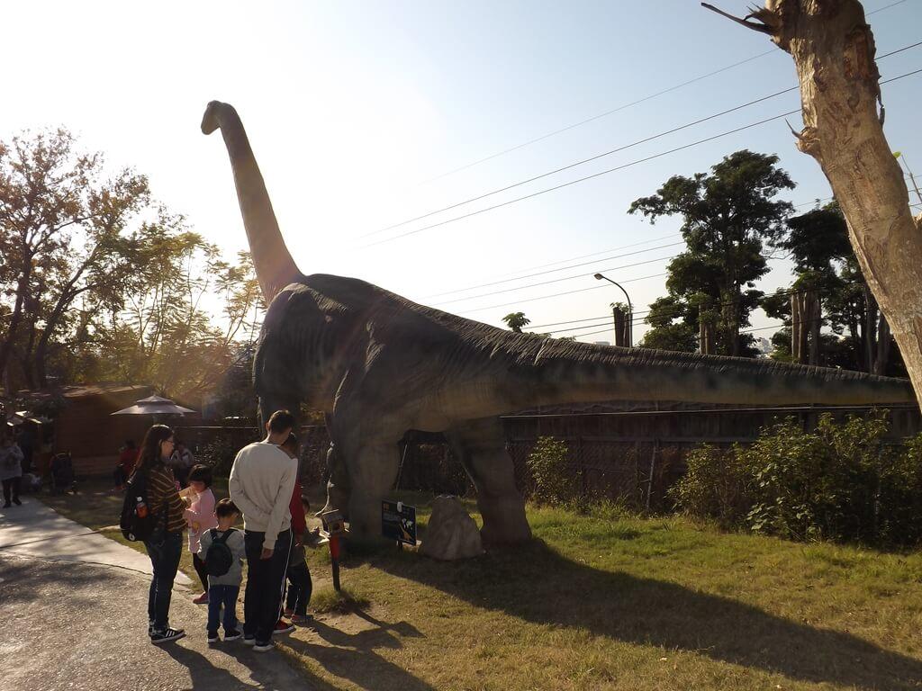 百果山探索樂園的圖片:第10張照片