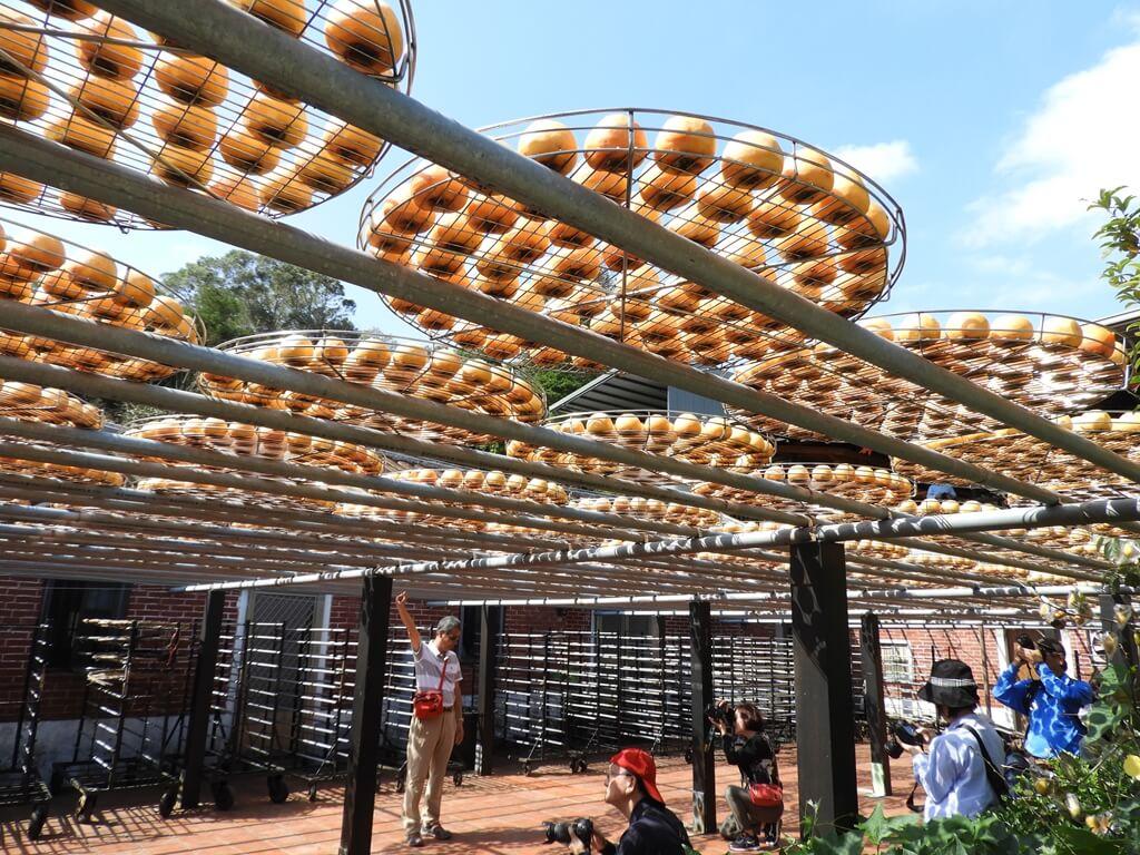 金漢柿餅教育農園的圖片:第32張照片