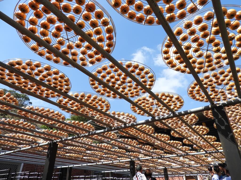 金漢柿餅教育農園的圖片:第33張照片