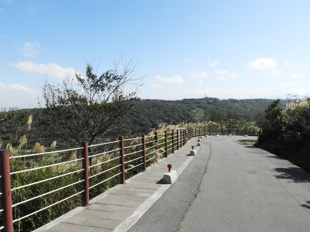 楊梅秀才登山步道的圖片:第72張照片