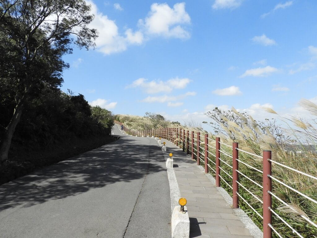 楊梅秀才登山步道的圖片:第73張照片