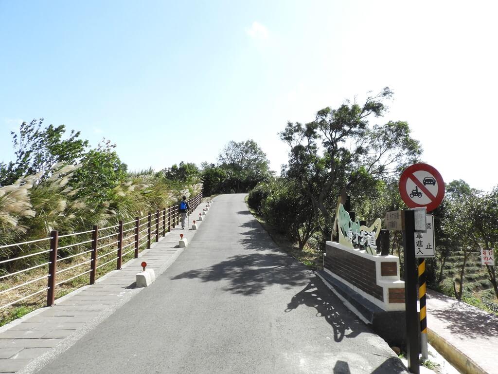 楊梅秀才登山步道的圖片:第80張照片